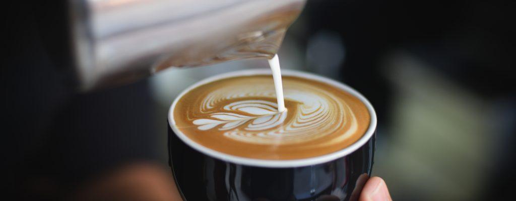 cappuccino - contact
